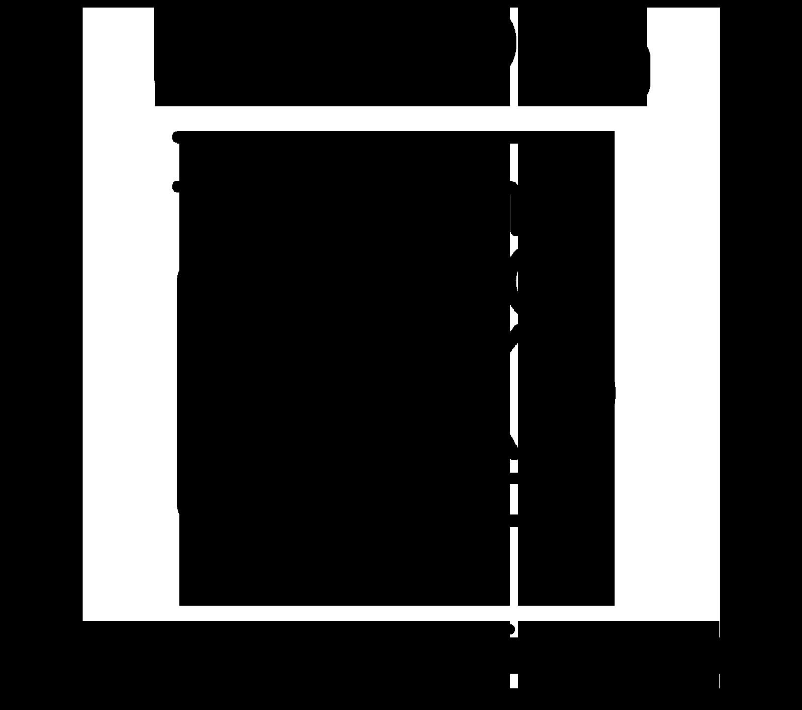 Usis Pro Logo